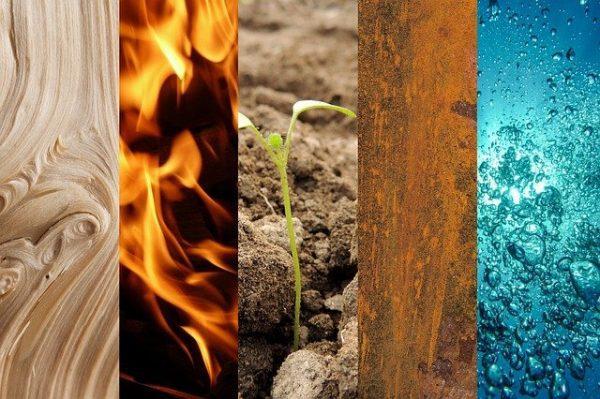 TCM Onlineschulung Teil II: - Die 5 Elemente Lehre